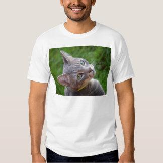 Milo the Silver Tabby Tee Shirt