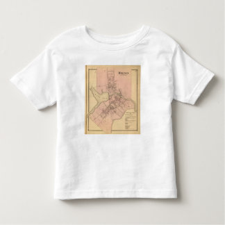 Milton Delaware Toddler T-shirt