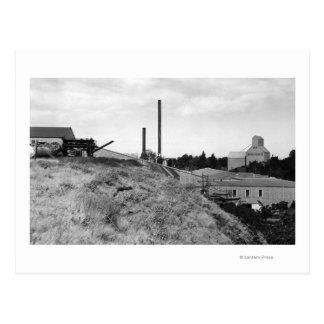 Milton, Oregon View of Town Elevator Photograph Postcard