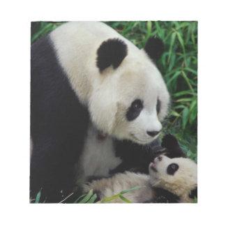 Mime a la panda y al bebé en el arbusto de bambú,  blocs de papel