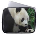Mime a la panda y al bebé en el arbusto de bambú,  manga portátil