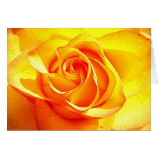 Mimi Rose -Birthday Card