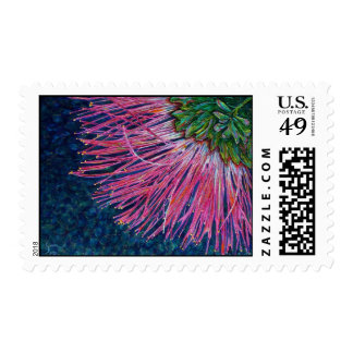 Mimosa Bloom Flower Fine Art Postage Stamp