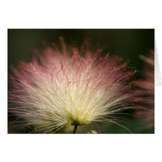 Mimosa de la fibra óptica tarjeta de felicitación
