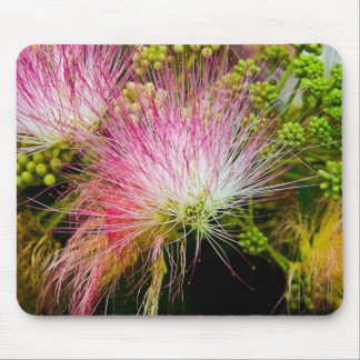 Mimosa Delight Mouse Pad