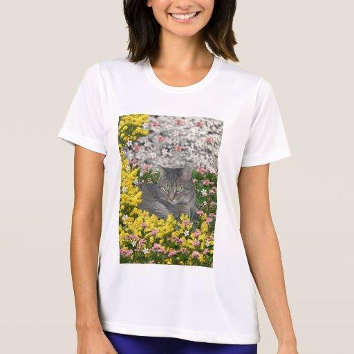 Mimosa el gato de Tabby del tigre en flores del Playera