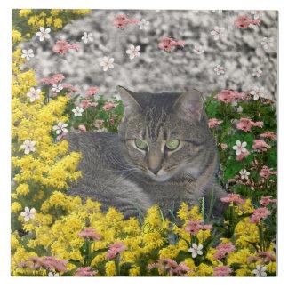 Mimosa el gato de tigre en flores del Mimosa Azulejo Cuadrado Grande