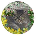 Mimosa el gato de tigre en flores del Mimosa Reloj
