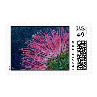Mimosa Flower Fine Art Postage Stamp