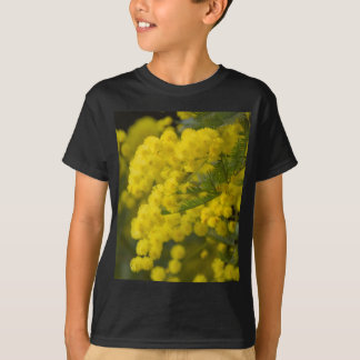 mimosa in bloom T-Shirt