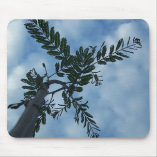 Mimosa Leaves on Cloudy Sky Mouse Pad