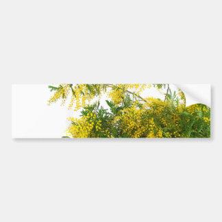Mimosa Pegatina Para Auto