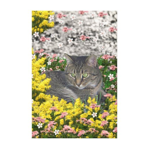 Mimosa the Tiger Cat in Mimosa Flowers Gallery Wrap Canvas