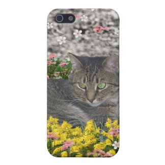 Mimosa the Tiger Cat in Mimosa Flowers iPhone SE/5/5s Cover