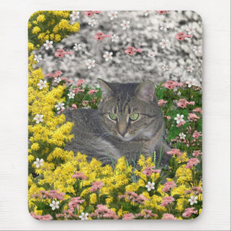 Mimosa the Tiger Cat in Mimosa Flowers Mouse Pad