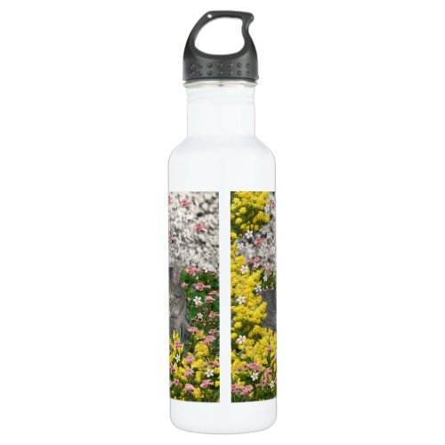 Mimosa the Tiger Cat in Mimosa Flowers Water Bottle