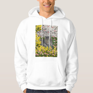 Mimosa the Tiger Tabby Cat in Mimosa Flowers Hoodie