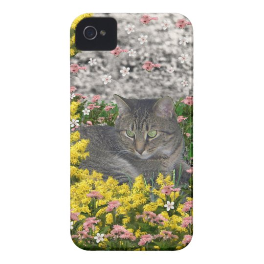 Mimosa the Tiger Tabby Cat in Mimosa Flowers iPhone 4 Case