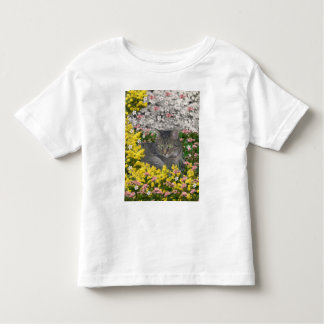 Mimosa the Tiger Tabby Cat in Mimosa Flowers Toddler T-shirt