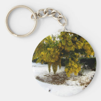 Mimosa tree in the snow key chains