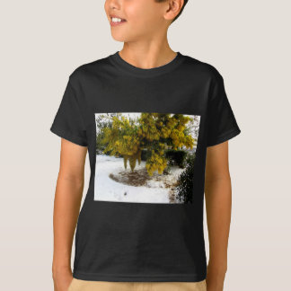 Mimosa tree in the snow T-Shirt