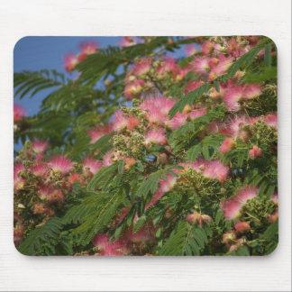 Mimosa tree  mouse pad