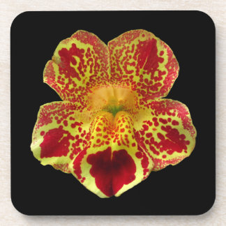 Mimulus flower ~ Cork backed coasters