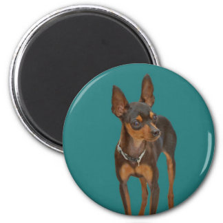 Min Pin 2 Inch Round Magnet
