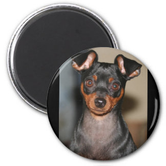 Min_pin 2 Inch Round Magnet