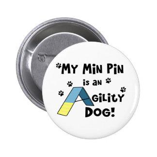 Min Pin Agility Dog
