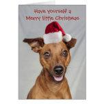 Min Pin dog with Santa cap Christmas card