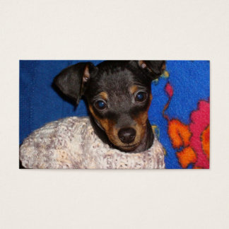 min pin in sweater.png business card