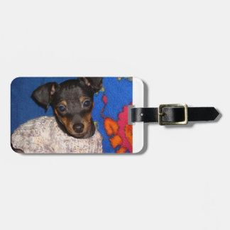 min pin in sweater.png tag for luggage