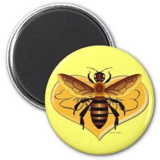 Mina de la abeja imán redondo 5 cm