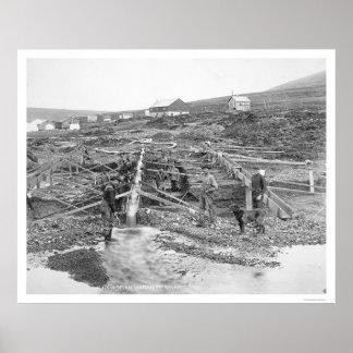 Mina de oro de la cala del yunque Alaska 1916 Poster