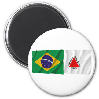 Minas Gerais & Brazil Waving Flags Magnet