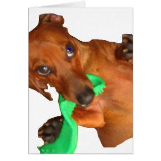 Minature Dachshund Card