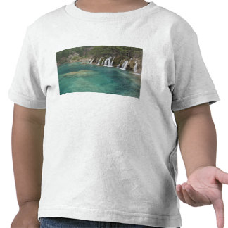 Mineral deposits make waterfalls and clear tshirt