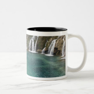 Mineral deposits make waterfalls and clear Two-Tone coffee mug
