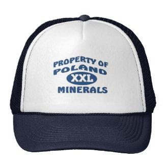 Minerales de Polonia XXL Gorras De Camionero