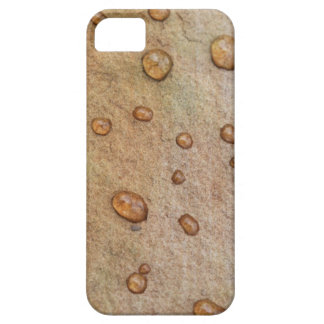 Minerals Cover For iPhone 5/5S