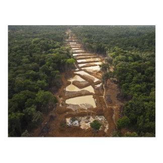 Minería aurífera aluvial Selva tropical Guyana Tarjetas Postales