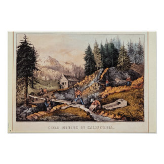 Minería aurífera en California Posters