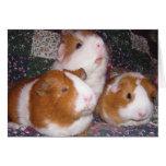 Minerva y amigos Notecard Tarjeton