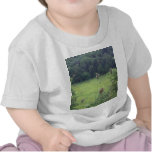 Mines of Spain Meadow T-shirts