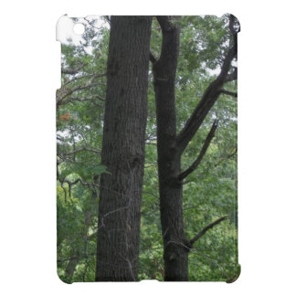 Mines of Spain Trees with Mississippi River iPad Mini Cover