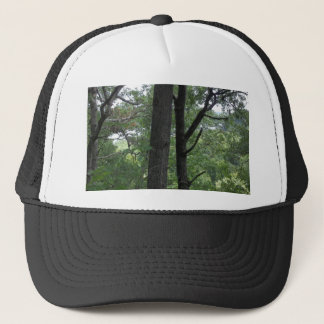 Mines of Spain Trees with Mississippi River Trucker Hat