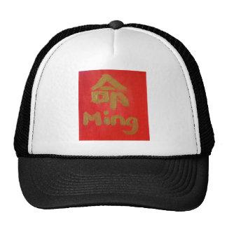 Ming (Destiny) Hat