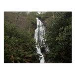 Mingo Falls Postcard