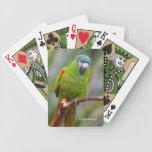 Mini) actitudes del Macaw de Hahn (en una rama Barajas